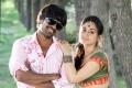 Srinivas, Aksha Pardasany in Rye Rye Movie Photos