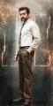 Actor Surya in S3 Movie Latest Stills
