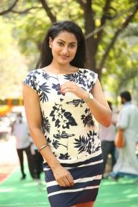 Actress Saafi Kaur Photos @ Pudingi No.1 Movie Launch