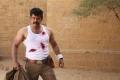 Saamy² Movie Hero Vikram HD Photos