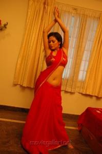Actress Sada Hot Saree Pics in Maithri Movie
