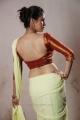 Torchlight Actress Sadha Hot Saree Images HD