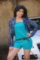 Actress Pranitha in Saguni Movie Pictures