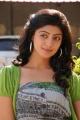 Actress Pranitha in Saguni Movie Images