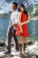 Karthi, Praneetha in Saguni Movie Photos