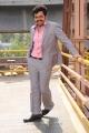 Actor Karthi Stylish Pics in Saguni Movie