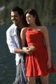 Karthi,Praneetha in Saguni New Stills