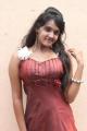Tamil Actress Sahana Hot Stills