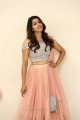 Actress Sai Dhansika HD Images @ Udgharshana Press Meet