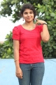 Actress Anu Krishna @ Saaindhaadu Saaindhaadu Team Interview Stills