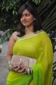 Gayathri Raghuram @ Saivam Movie Audio Launch Stills