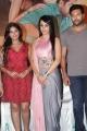 Anjali, Trisha, Jayam Ravi @ Sakalakala Vallavan Appatakkar Movie Press Meet Stills