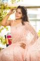 Tamil Actress Sakshi Agarwal Saree in Photoshoot Images
