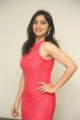 Telugu Actress Sakshi Kakkar Hot Stills in Red Dress