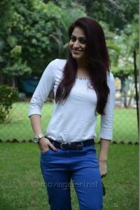 Salim Movie Heroine Aksha Pardasany Hot Photos