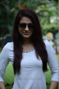 Salim Movie Actress Aksha Pardasany Photos