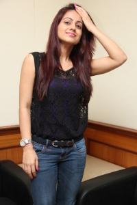 Actress Aksha Pardasany @ Salim Movie Success Meet Stills