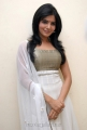 Samantha Ruth Prabhu New Stills at SVSC Movie Interview