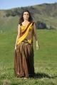 Samantha Hot Spicy Saree in Dookudu
