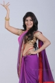 Actress Samantha Hot Spicy Violet Saree Photoshoot Stills
