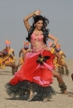 Samantha Hot Pics from Dookudu Chulbuli Chulbuli Song