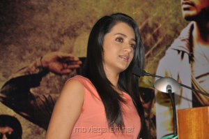 Actress Trisha Krishnan at Samar Movie Success Meet Stills
