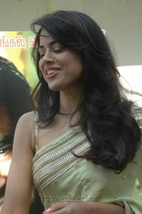 Sameera Reddy Hot in Saree Photos Stills