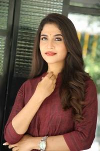 Mass Maharaja Movie Actress Sampada Hulivana Photos
