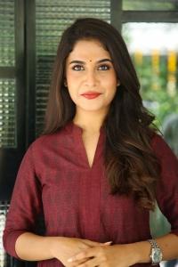 Mass Maharaja Movie Actress Sampadaah Nagesh Photos