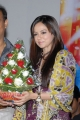 Sana Khan at Mr. Nookayya Triple Platinum Disc Function