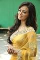 Sana Khan in Saree Images at Nadigayin Diary Audio Release
