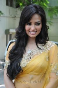 Actress Sana Khan Hot Saree Images at Nadigayin Diary Audio Launch