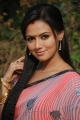 Sana Khan Cute Saree Stills