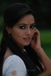 Sana Khan Cute Saree Stills