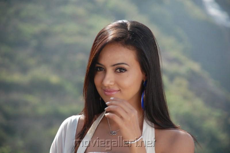 Sana Khan Cute Photos [ Gallery View ]