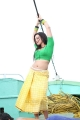 Sana Khan Spicy Hot Stills in Gajjala Gurram Movie