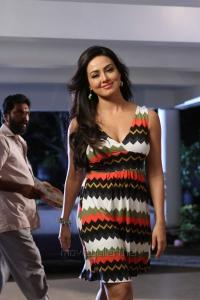 Gajjala Gurram Actress Sana Khan Hot Stills