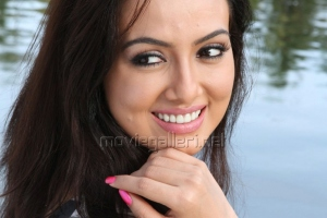 Actress Sana Khan Hot Stills in Gajjala Gurram Movie