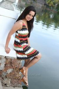 Gajjala Gurram Movie Actress Sana Khan Hot Stills