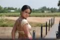Sana Khan Hot Images