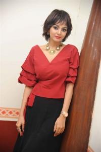 Tamil Actress Sanam Shetty New Photos