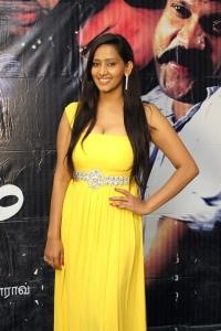 Actress Sanchana Singh Hot Stills at Yaarukku Theriyum Press Meet