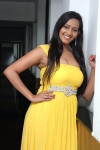 Sanchana Tamil Actress Hot Stills