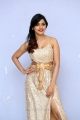 Actress Sanchita Shetty Latest Pictures @ Party Audio Release