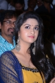 Sandamarutham Movie Audio Launch Stills