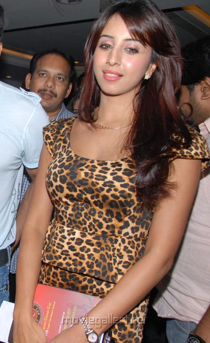 Actress Sanjana at Crescent Cricket Cup 2012 Prees Meet Pictures