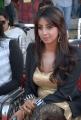 Actress Sanjana Hot New Photos at Crescent Cricket Cup 2012