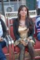 Actress Sanjana Hot Photos at Crescent Cricket Cup 2012