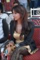 Sanjjanaa Hot New Photos at Crescent Cricket Cup 2012