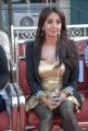 Actress Sanjana Hot New Photos at Crescent Cricket Cup (CCC) 2012